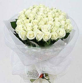 36朵玫瑰的花语是什么?
