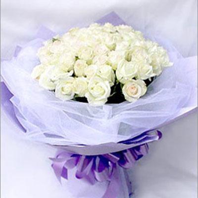 52朵白玫瑰
